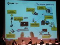Digital_gameplay_nds_4